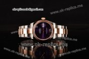Rolex Datejust Asia 2813 Automatic Two Tone Case with Purple Dial and Roman Markers (BP)